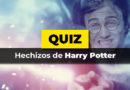 El test de hechizos de harry potter