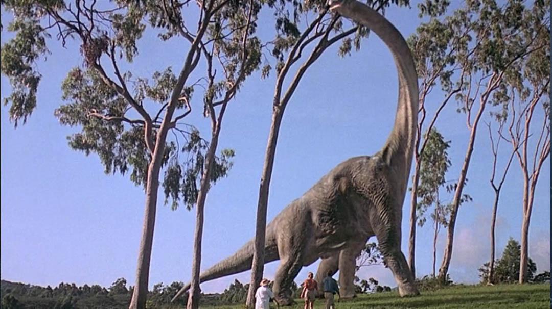Image for #4. ¿Cuánto medía el cuello del Brachiosaurus que ven al principio de la película?