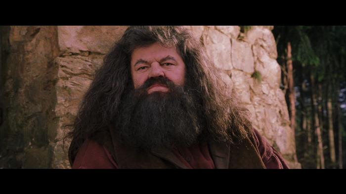 Harry Potter y la Piedra Filosofal • Warner Bros