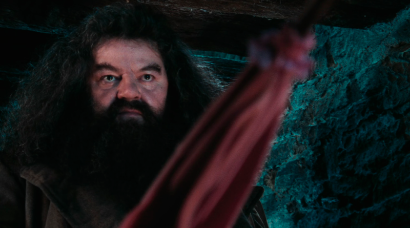 Puedes tener el paraguas rosa de Hagrid
