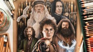 La brillante ilustración de Harry Potter de Rachel Dickison